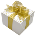 Fancy Gold Ribbon Cookie Gift Box