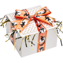 Halloween Cookie Gift Box with Ribbon