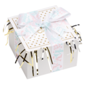 Baby Girl Cookie Gift Box with Ribbon