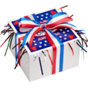 Patriotic Cookie Gift Box with Ribbon