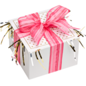 Pink Ribbon Cookie Gift Box