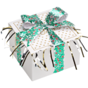 Christmas Holly Ribbon Cookie Gift Box