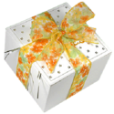 Spring Ribbon Cookie Gift Box