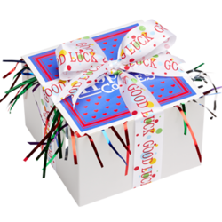Good Luck Cookie Gift Box with Ribbon