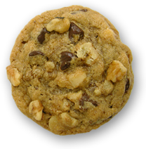A Chocolate Chip Walnut Cookie